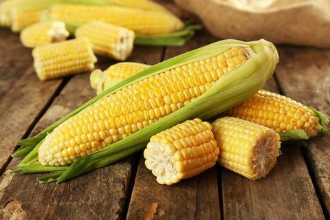 Nam Phi: CEC tăng dự báo sản lượng ngô niên vụ 2020/21 lên 15.85 triệu tấn