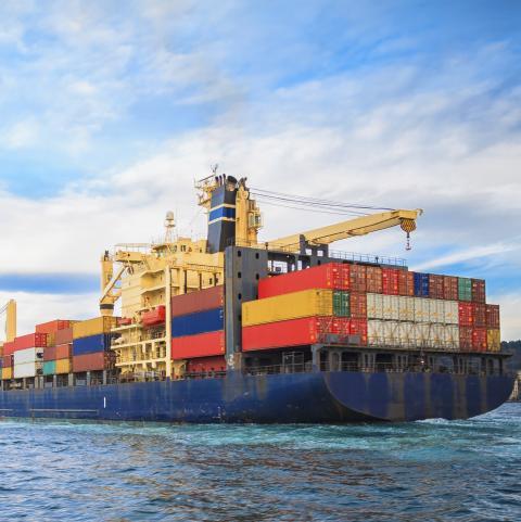 Usda daily export sales: bán 175,000 tấn ngô niên vụ 21/22 cho nhật bản