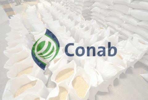 Brazil: CONAB tăng dự báo sản lượng đậu tương và giảm mạnh dự báo sản lượng ngô