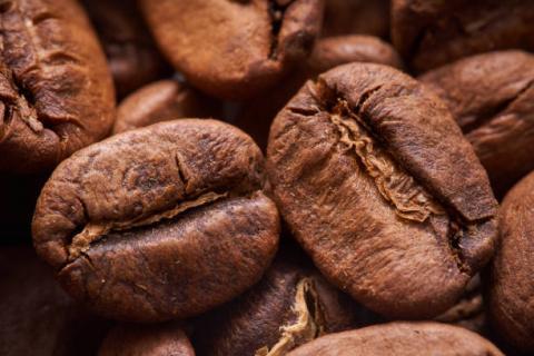 Brazil: bán hàng cà phê niên vụ…