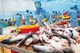 Nhiều dư địa cho xuất khẩu thủy sản