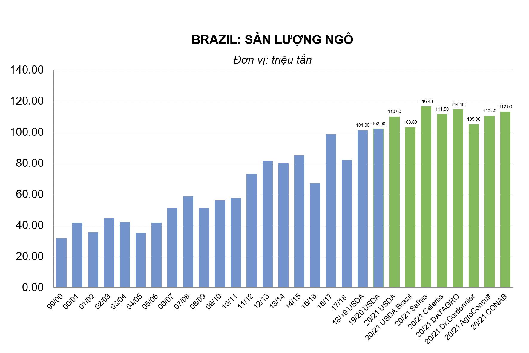 Brazil: Sản lượng ngô tại bang phía nam ảnh hưởng bởi thời tiết khô hạn