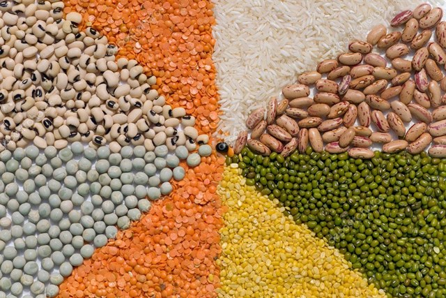 Việt Nam thúc đẩy nhập nông sản, công nghệ từ Hoa Kỳ