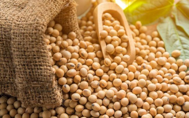 Thị trường Nông sản thế giới 7/7/2020: Giá đậu tương tăng